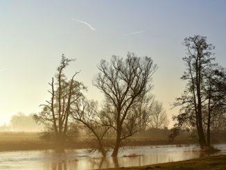 Kuvituskuva: Tulva.